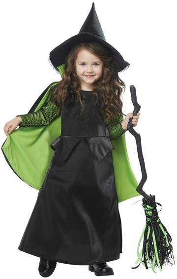 wizard of oz wicked witch of the west costume click for larger image